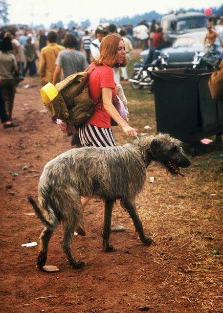 Girls of Woodstock, 1969 (50)