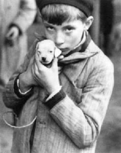 andré-kertész-the-puppy